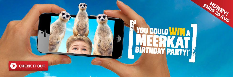 Meerkat birthday party 2017
